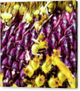 Purple Sunflower Seeds Acrylic Print