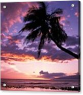 Purple Sunset Acrylic Print