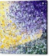 Purple Tree And The Afternoon Sun Acrylic Print