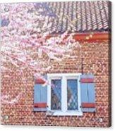 Purple Tree Outside Acrylic Print