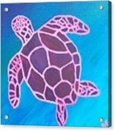 Purple Turtle Acrylic Print