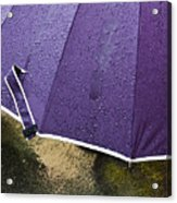 Purple Umbrella Acrylic Print