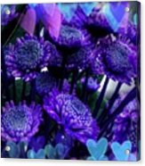 Purple  Valentine Acrylic Print