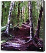 Purple Walk Acrylic Print