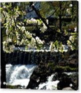 Putnam Spring Acrylic Print