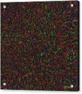 Python Daliescher Acrylic Print