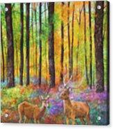 Quantic Dream Acrylic Print
