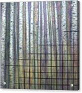 Quantum Edith Acrylic Print