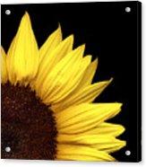 Quarter Sun Acrylic Print