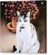 Queen Marishka Acrylic Print