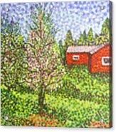 Quick Blossoms, New Grass Acrylic Print