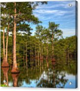 Quiet Afternoon At The Bayou Acrylic Print