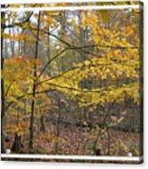 Quiet Autumn Morning Acrylic Print