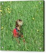 Quiet Fields Acrylic Print