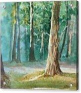 Quiet Forest Acrylic Print