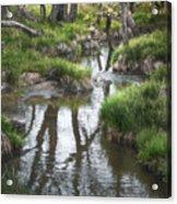 Quiet Stream Acrylic Print