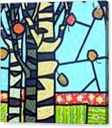 Quilted Birch Garden Acrylic Print