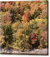 Quinnipiac River Color Acrylic Print