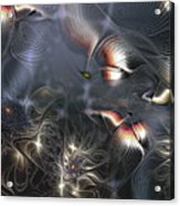 Quixotic Cerebrations Acrylic Print