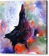 Quothe The Raven Acrylic Print