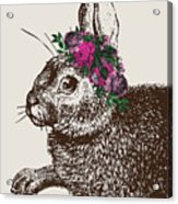 Rabbit And Roses Acrylic Print
