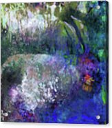 Rabbit Reflection Acrylic Print