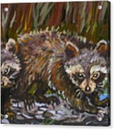 Raccoons From River Mural Acrylic Print