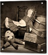 Rag Doll Acrylic Print by Tom Mc Nemar