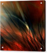 Raging Fire Acrylic Print