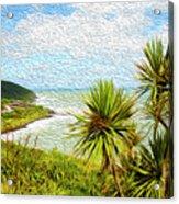 Raglan Coastline Acrylic Print