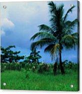 Rain Cloudsover Dominica Acrylic Print