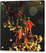 Rain Soaked Leaves-3 Acrylic Print