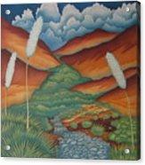 Rain Trail Acrylic Print