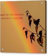 Rainbow And Copper Acrylic Print