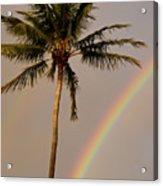 Rainbow And Palm Tree Acrylic Print