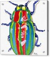Rainbow Bug Acrylic Print