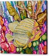 Rainbow-colored Sunfish Acrylic Print