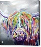 Rainbow Coo Acrylic Print