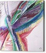 Rainbow Dragonfly Acrylic Print