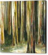 Rainbow Eucalyptus Forest Acrylic Print