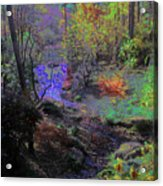 Rainbow Fairies Sweep Across The Landscape Acrylic Print