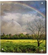 Rainbow Field Acrylic Print
