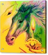 Rainbow Horses And The Pearl Of Light Acrylic Print