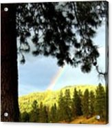 Rainbow In Pine Country Acrylic Print