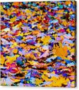 Rainbow Leaves Acrylic Print
