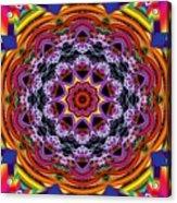 Rainbow Lightning Acrylic Print by Bobby Hammerstone