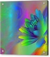 Rainbow Lily Acrylic Print