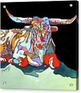 Rainbow Longhorn Acrylic Print
