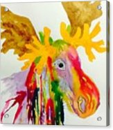Rainbow Moose Head  - Abstract Acrylic Print