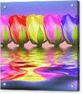 Rainbow Of Roses II Acrylic Print